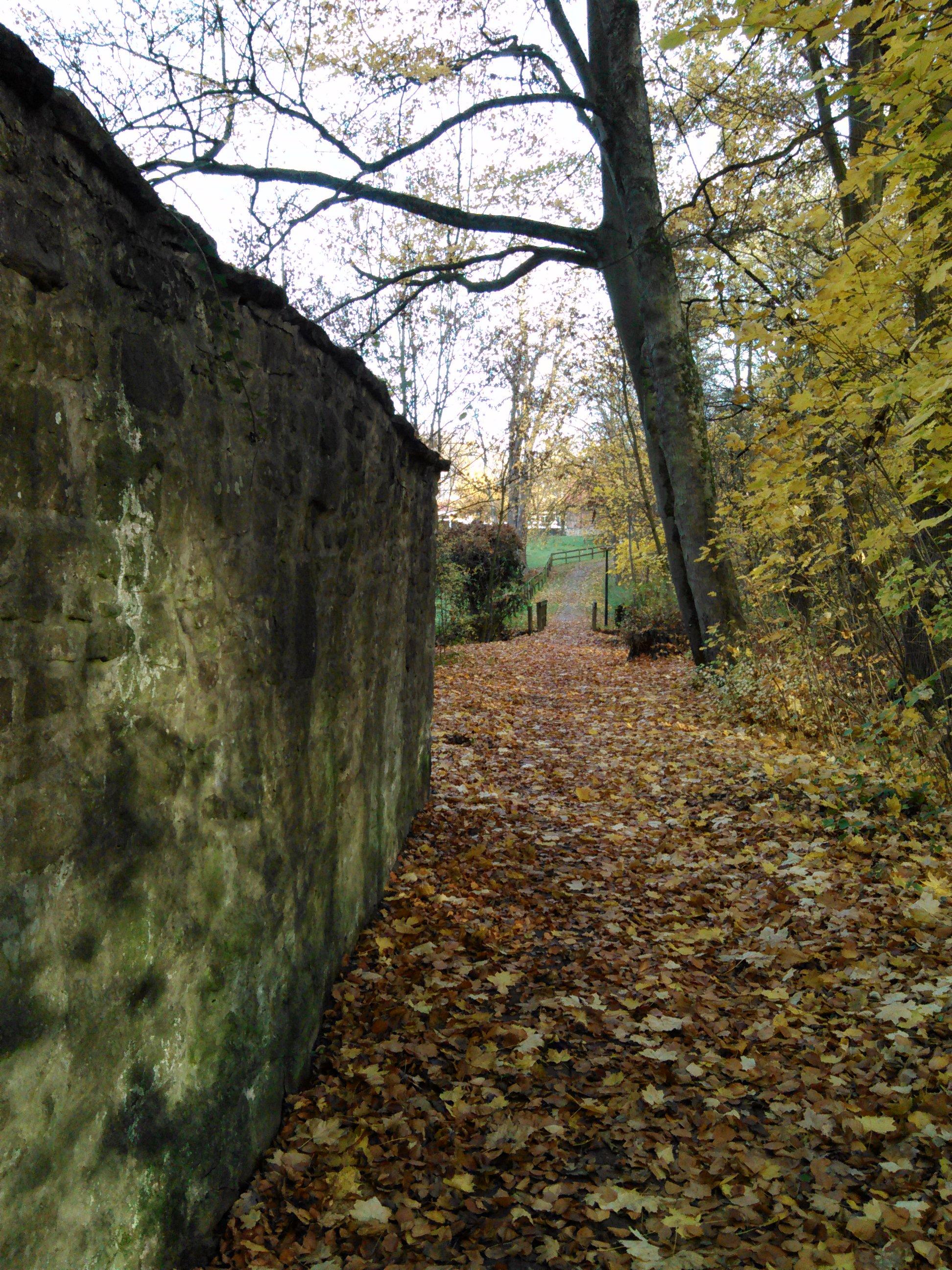 HerbstSchlussPunkt (2)